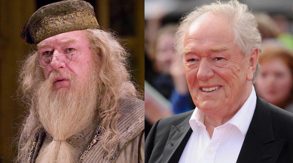 Актеры фильма о Гарри Поттере: чем они занимались после съемок и где они сейчас - Альбус Дамблдор - Майкл Гэмбон